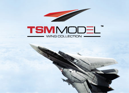 TSM-Model Official Website